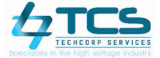 TechCorp Services